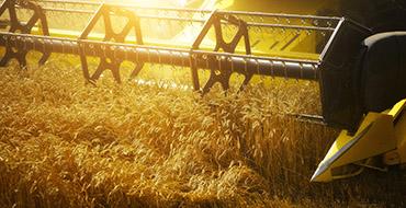 صنعت کشاورزی